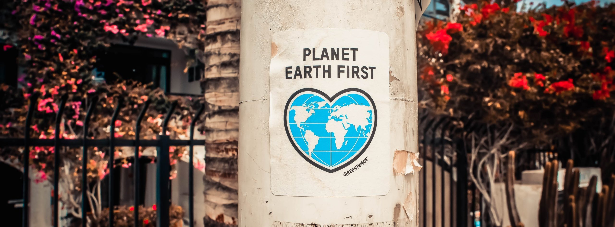 planet-earth-first-poster-on-a-concrete-post-3302183